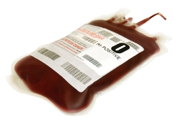 bloodtranfusionphoto-sm